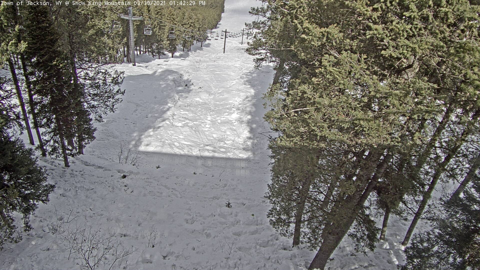 Jackson Hole Town View Webcam Image